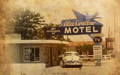 IMG_4900 copie (C&C52) Tags: paysageurbain landscape motel voiture vintage patrimoine artnumérique