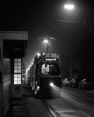 Arbeitsweg (richard.kralicek.wien) Tags: blackandwhite vienna austria transport foggy