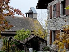 DSCN8026 (keepps) Tags: switzerland suisse schweiz vaud brent fall autumn