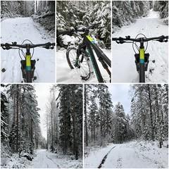 First Snow (pjen) Tags: boreal maastopyörä pike 275 650b kashima trail bicycle bike 2x11 outdoor vehicle 5010 5010cc 50to01 autumn fall santacruz mtb finland nature forest carbon hiilikuitu maastopyöräily fullsuspension snow