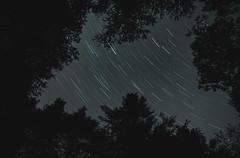 Star Trails at Jay Cooke State Park, Minnesota (Tony Webster) Tags: esko jaycookestatepark minnesota astrophotography longexposure night nightsky sky startrails stars