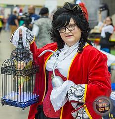 Grand Rapids Comic Con 45