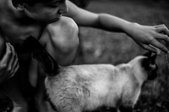 Skin and fur (PaxaMik) Tags: blackandwhitephotos black skin fur cat chat hand main garden jardin jardindéé peau summertime kid