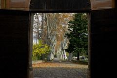 Villeneuvette (Michel Seguret Thanks for 12,9 M views !!!) Tags: france herault languedoc occitanie michelseguret nikon d800 pro automne autumn fall herbst