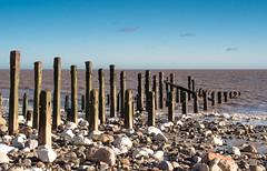 POSTS, SPURN HEAD, E YORKSHIRE_DSC_2499_LR_2.5 (Roger Perriss) Tags: kilnsea spurn d750 beach sand posts shadows nets rust pebbles stones sky water horizon
