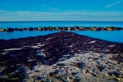 Stones in the Blue (mikkelschreiber) Tags: pentax k70 denmark november fall 2018 brown red sand ocean water blue beach seascape longexposure