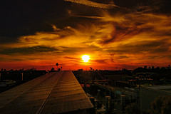 02 (morgan@morgangenser.com) Tags: sunset pretty beautiful red orange colorful evening dusk clouds blue palmtree santamonicacollege smc silhouette sun yellow cool