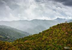 Rain in the mountains (noel_upfield1) Tags: chiviricoguama cuba mountains nature rain scenic ©noelaupfieldpixlbypixlphotography