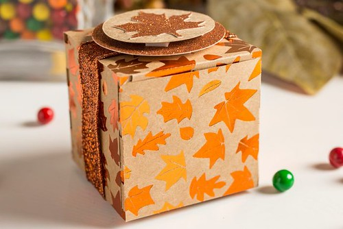 THANKSGIVING Cricut Mystery Box