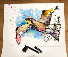B095-365 one bird a day - Steadman Seagull (www.doortje.nl) Tags: inksplashes watercolour ink pen style ralphsteadman steadmanseagull