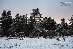 """Arvanitsa 30/11/2018 • <a style=""""font-size:0.8em;"""" href=""""http://www.flickr.com/photos/132415375@N05/46082667792/"""" target=""""_blank"""">View on Flickr</a>"""