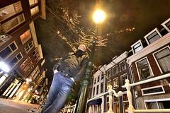 Delft Kikkerperspectief
