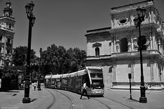 El Tranvia - The tram (ricardocarmonafdez) Tags: sevilla ciudad city cityscape urbanscape streetphotography tranvia tram sunlight contrast people cielo sky arquitectura architecture monocromo monochrome blackandwhite bn nikon d850 24120f4gvr