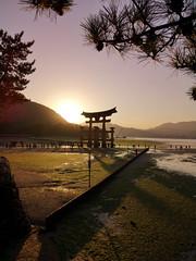 Itsukushima (bruno carreras) Tags: japon japan nippon isla island miyajima isukushima pagoda templo temple torii senjokaku hatsukaichi miyajimacho ciervo deer shika sol sun sunsen aterdecer puerto budismo budist