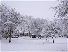 Winter 2010. (Country Girl 76) Tags: winter snow village 2010 cut off trees cold north yorkshire