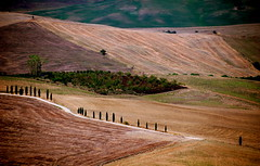 Toscana (Tuscany) (pjarc) Tags: europe europa italy italia toscana tuscany 2018 paesaggio landscape terra earth natura nature geographic colori colors foto photo digital nikon dx