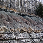 Paleosol (Cave Branch Member, Slade Formation, Upper Mississippian; Clack Mountain Road Outcrop, south of Morehead, Kentucky, USA) 3 thumbnail