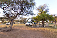 Our Campsite _6194-2 (hkoons) Tags: southernafrica africa african namibia tree growth plants vegetation camping namutoni campsite etosha