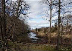 Stony Brook, Long Island... (angelakanner) Tags: stony brook longisland water trees winter bluesky