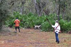 EEF_7638 (efusco) Tags: boar medieval spear brambleschoolearteofthehunt bramble schoole military arts academy florida ferel hog pig