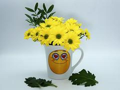 Freitagsblümchen (ingrid eulenfan) Tags: 2019 kaffeepause coffeebreak 365project kafffee coffee cup coffeepot blumen flowers lächeln smile chrysanthemen sigma30mm sonyalpha6000