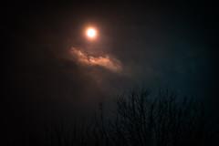 DSCF4024-3.jpg (madaday) Tags: nightsky lunareclipse space sky night moon stars filters edited
