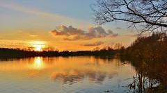 ' Le lac du Héron' (jean-paul Falempin) Tags: lacs coucher soleil reflets