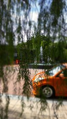 Willows & Fountains (kat_chin_2000) Tags: willowtrees willows fountain housings gatedcommunity redminote3 sunwayrydgeway