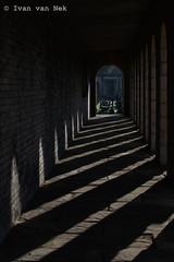 Brompton Cemetery (Ivan van Nek) Tags: bromptoncemetery london england westbrompton chelsea greatbritain derailinator brexit unitedkingdom nikon nikond3200 d3200 engeland angleterre verenigdkoninkrijk thekingdomformerlyknownasunited tkfkau begraafplaats cimetière shadows perspective perspectief galerij mysterious dark