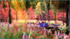 Like a dream (Tim Deschanel) Tags: tim deschanel sl second life paysage landscape exploration haruka ricky paradise sierra city fleur flower couleur color dream paradis rêve