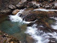 Parque Nacional de Ordesa (Gatodidi) Tags: parque nacional ordesa huesca aragon bosque valle rocas agua seda arboles piedras cascadas garganta landscape paisaje paisatge belleza natura naturaleza