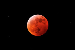 Blood Moon (jimf_29605) Tags: moon lunareclipse bloodmoon sony a7rii 24240mm greenville southcarolina