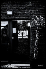 2018-09-30-Huy-33Pt (Pontalain) Tags: figur fusgänger character door espejo miroir mirror peatón pedestrian personaje personnage piéton porte puerta reflejo reflet reflexion spiegel spiegelbild wirkt