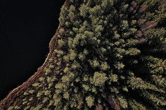 Forest pond (Klas-Herman Lundgren) Tags: dalarna sweden gimmen autumn höst november forest trees lake sjö skog travel blue tjärn porstjärn drone shore strand sverige sifferbo se
