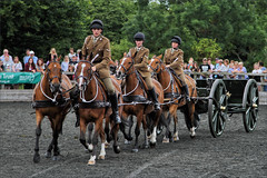 Pulling the Gun (meniscuslens) Tags: royal horse artillery gun carriage horses hounds heroes event charity trust soldier uniform arena buckinghamshire aylesbury high wycombe princes risborough