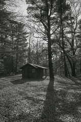 022586B&W  A Cabin In The Woods (David G. Hoffman) Tags: blackandwhite cabin shadows woods