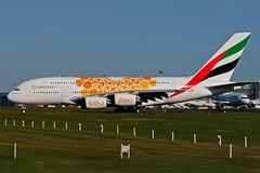 A6-EEY (Emirates - EXPO) (Steelhead 2010) Tags: emirates expo airbus a380 a380800 dus a6reg a6eey