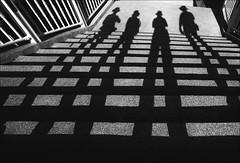 F_MG_6785-2-Canon 6DII-Canon 16-35mm-May Lee 廖藹淳 (May-margy) Tags: maymargy bw 黑白 人像 逆光 剪影 階梯 洗石子 欄杆 幾何構圖 點人 台灣攝影師 台中市 台灣 中華民國 街拍 線條造型與光影 天馬行空鏡頭的異想世界 心象意象與影像 fmg67852 自拍 portrait backlighting silhouette steps handrail streetviewphotography mayandfriends humaningeometry humanelement taiwanphotographer maylee廖藹淳 taichungcity taiwan repofchina canon6dii canon1635mm