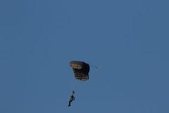2018_09_02_0395 (EJ Bergin) Tags: landscape westsussex sussex wisboroughgreen balloonfestival wisboroughgreencharityballoonfestival balloon balloons parachute hotairballoon
