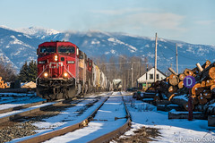 CP 9620 South at Sandpoint, ID (evanlofback) Tags: railroadup spokanesub enginecp cp9620 ac4400cw foreignpower grain sandpoint sunny winter snow mountains timber