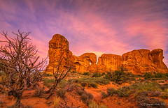 Arches NP sunrise (NettyA) Tags: 2017 archesnationalpark sonya7r usa utah windowsarea clouds junipertree landscape rocks sunrise travel