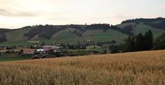 DSC05705 (ursrüegsegger) Tags: linden juli august getreideernte bauernhöfe landschaft regenbogen