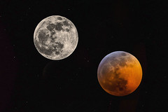 Supermoon Eclipse January 2019 (jbarc in BC) Tags: moon lunar eclipse bloodredmoonshadow earth sun atmosphere sky tripod nikonz7 telephoto wolfmoon fullmoon totaleclipse blend 28400mmnikon
