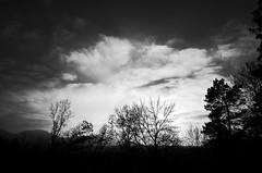 View through a window (moritzs33) Tags: sky clouds light blackandwhite noir trees ricoh gr grii landscape countryside landschaft balingen schwarzundweis himmel wolken licht bäume
