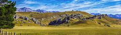 Arthurs Pass - Castle Hill - New Zealand (Bobinstow2010) Tags: blue mountains clouds fields grass castlehill arthurspass newzealand southisland rocks tree fence holiday vacation 2016