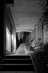 down in the underground (Super G) Tags: nikon322 bw blackandwhite nocturnal stairs underground path 2018