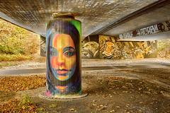Under the Bridge (JuliSonne) Tags: streetart urbanekunst mauer wall graffiti colors scene urban pasteup stencil street brã¼cke bridge underthebridge brücke