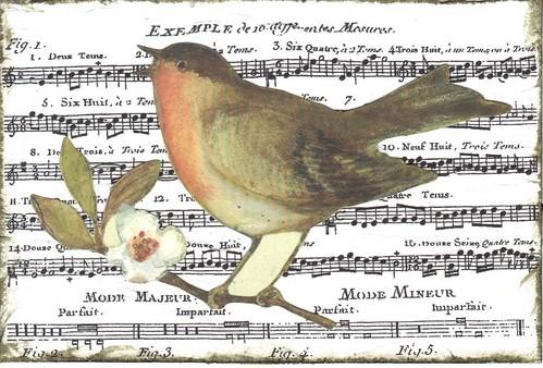 Bird Napkin pc