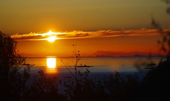 Lofoten wall (sfryers) Tags: midnightsun sun polarday arctic circle sunset sunrise lofoten islands mountains horizon bodø nordland norway carlzeiss jena 135mm 135