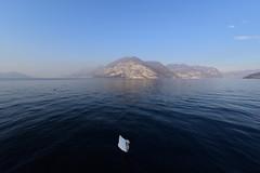Lago d'Iseo, Italy, December 2018 031 (tango-) Tags: iseo lagoiseo iseolake lagodiseo lombardia italia italien italie italy